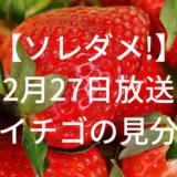 【ソレダメ!】あまいイチゴの見分け方とは!?2月27日放送