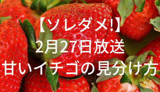 【ソレダメ!】イチゴのすごいパワー!美味しいイチゴの見分け方?2月27日放送