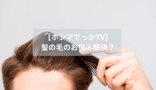 【ホンマでっかTV】-髪の毛のお悩み解決?