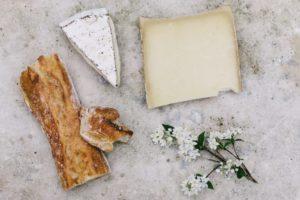 第4位 血管年齢の若返りに効果的なのは「ブルーチーズ」