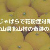 じゃばらが花粉症対策に効果的|和歌山県北山村の奇跡の果実
