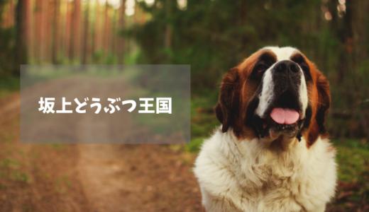 【坂上どうぶつ王国】ノイアー(キャリアチェンジ犬)・歩行困難な少女と家族を救った犬