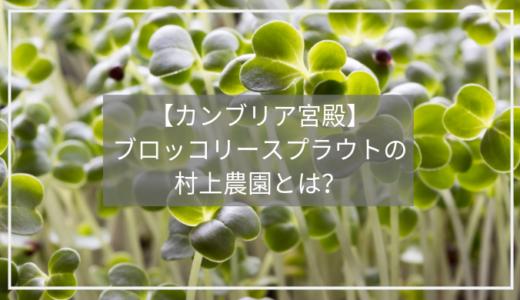 【カンブリア宮殿】ブロッコリースーパースプラウトで大人気「村上農園」とは!?