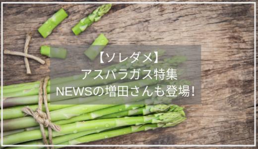 【ソレダメ】アスパラガス特集/まっすーも登場。美味しい食べ方やレシピ、保存法のまとめ。