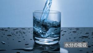 水分の吸収