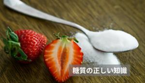 糖質の正しい知識