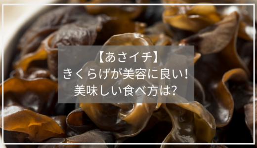 【あさイチ】きくらげの美味しい食べ方と美容効果!白きくらげのトレハロースがお肌に良い!