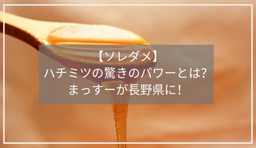 【ソレダメ】ハチミツパワーをまっすーが長野県でリポート。効果別のレシピまとめ!