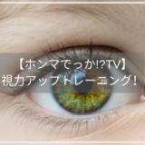 【ホンマでっか!?TV】視力アップトレーニング!