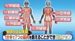 筋肉リズム体操で鍛える7つの筋肉