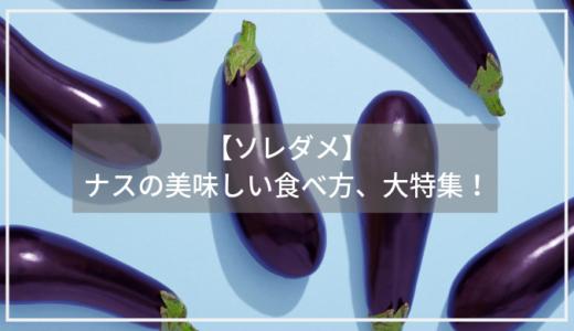 【ソレダメ】ナスがお肌に良い?ナスニンの効果とは?美味しいナスの蒲焼き丼の作り方も!