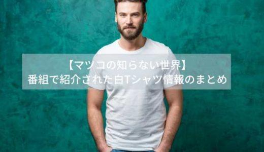 【マツコの知らない世界】番組で紹介された白Tシャツ情報のまとめ
