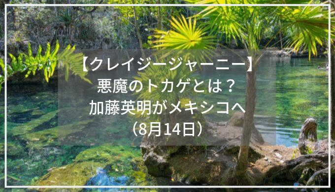 【クレイジージャーニー】悪魔のトカゲとは?加藤英明がメキシコへ(8月14日)