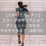 【ためしてガッテン】スロージョギングとは?ダイエットにもなるそのやり方は?(8月7日)
