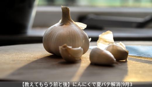 【教えてもらう前と後】にんにくで夏バテ解消。にんにく醤油漬けの作り方(9月3日)