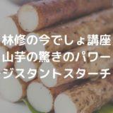 【林修の今でしょ講座】 山芋の驚きのパワー レジスタントスターチ!