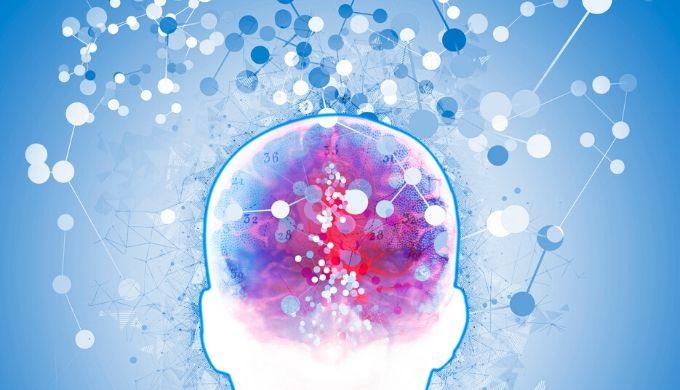 脳を活性化