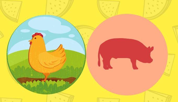 【林修の今でしょ講座】豚肉VS鶏肉の栄養パワー
