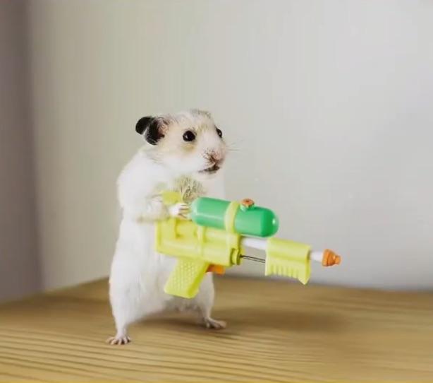 写真で一言「おもちゃの銃を持つねずみ」